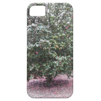 Funda Para iPhone SE/5/5s Cultivar antiguo de la flor del japonica de la