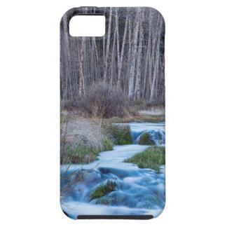 Funda Para iPhone SE/5/5s Derretimiento de la primavera de fluir abajo de la