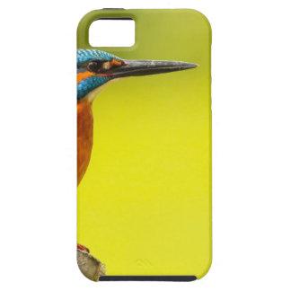 Funda Para iPhone SE/5/5s día birdy de los valantines del abucheo del pájaro