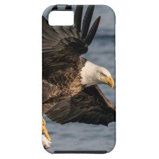 Funda Para iPhone SE/5/5s Eagle calvo que coge la comida