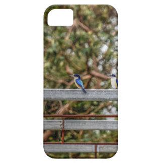 FUNDA PARA iPhone SE/5/5s EFECTOS AZULES DEL ARTE DE QUEENSLAND AUSTRALIA