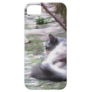 Funda Para iPhone SE/5/5s El dormir mullido del gato se agacha en el piso