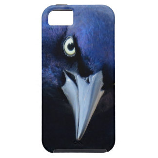 Funda Para iPhone SE/5/5s El Grackle enojado