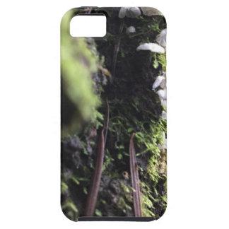 Funda Para iPhone SE/5/5s Faldas de hadas