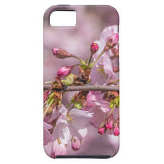 Funda Para iPhone SE/5/5s Flores de cerezo
