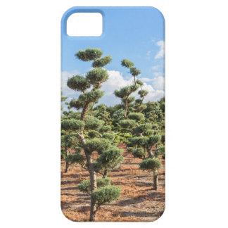 Funda Para iPhone SE/5/5s Formas hermosas del topiary en coníferas