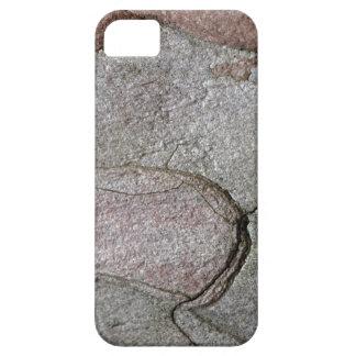 Funda Para iPhone SE/5/5s Foto macra de la corteza del pino