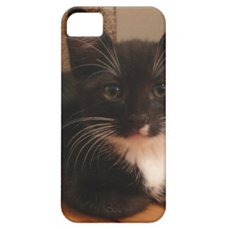 Funda Para iPhone SE/5/5s Gatito blanco y negro dulce que le mira