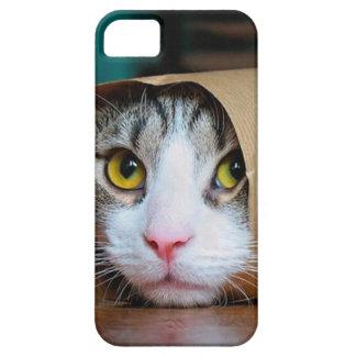 Funda Para iPhone SE/5/5s Gato de papel - gatos divertidos - meme del gato -