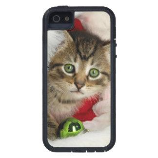 Funda Para iPhone SE/5/5s Gato del navidad - gato del gatito - gatos lindos