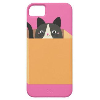 Funda Para iPhone SE/5/5s Gato en caja