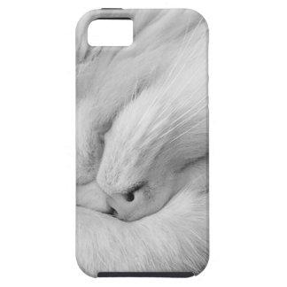 Funda Para iPhone SE/5/5s Gato en el teléfono texto