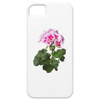 Funda Para iPhone SE/5/5s Geranio rojo y rosado