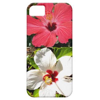 Funda Para iPhone SE/5/5s Hibiscos rosados y blancos