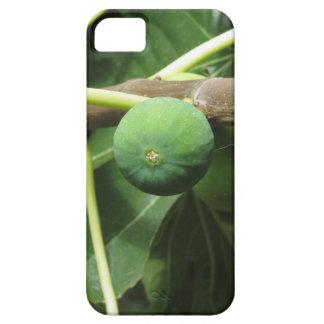 Funda Para iPhone SE/5/5s Higos verdes que maduran en una higuera