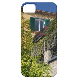 Funda Para iPhone SE/5/5s Hojas coloridas en casa