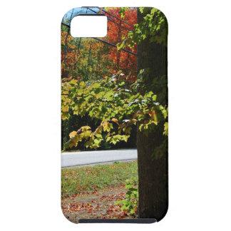Funda Para iPhone SE/5/5s Hojas de otoño en Maine