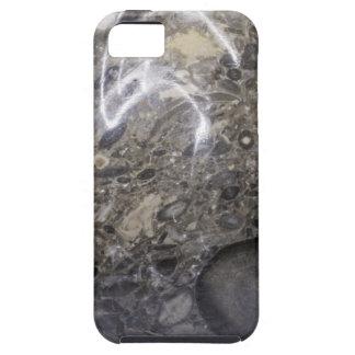 Funda Para iPhone SE/5/5s Huevo de piedra
