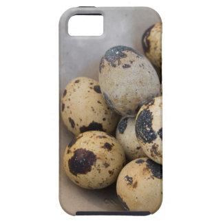 Funda Para iPhone SE/5/5s Huevos de codornices