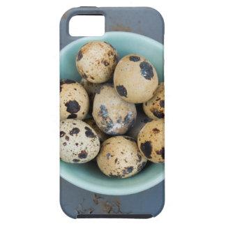 Funda Para iPhone SE/5/5s Huevos de codornices en un cuenco verde