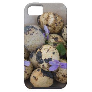 Funda Para iPhone SE/5/5s Huevos de codornices y flores 7533