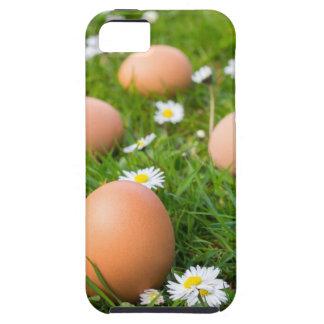 Funda Para iPhone SE/5/5s Huevos del pollo en hierba de la primavera con las