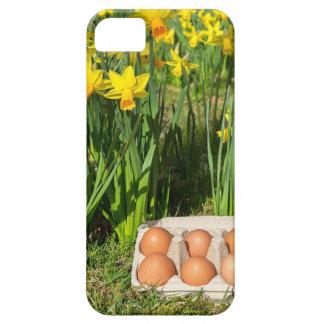 Funda Para iPhone SE/5/5s Huevos en caja en hierba con los narcisos