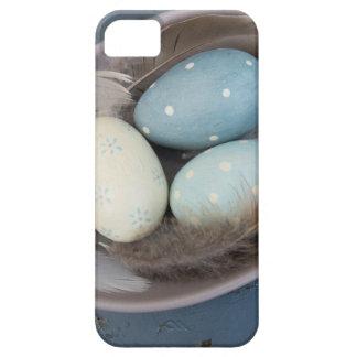Funda Para iPhone SE/5/5s Huevos y plumas