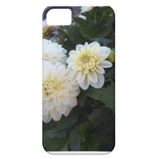 Funda Para iPhone SE/5/5s iPhone de la caja del teléfono del estampado de