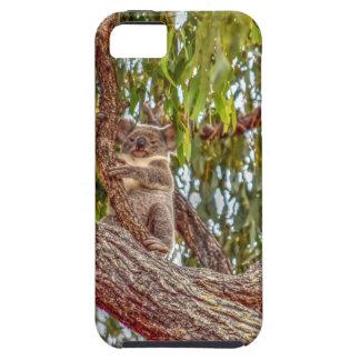 FUNDA PARA iPhone SE/5/5s KOALA EN EFECTOS DEL ARTE DE AUSTRALIA DEL ÁRBOL