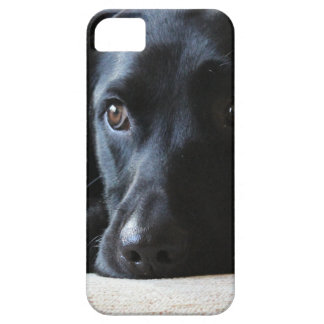Funda Para iPhone SE/5/5s Labrador negro