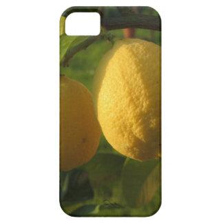 Funda Para iPhone SE/5/5s Limones amarillos que crecen en el árbol en la