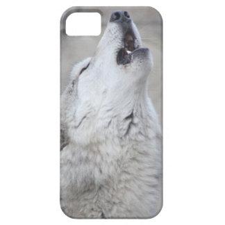 Funda Para iPhone SE/5/5s Lobo gris del grito