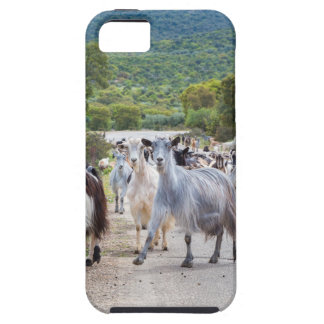 Funda Para iPhone SE/5/5s Manada de las cabras de montaña que caminan en el
