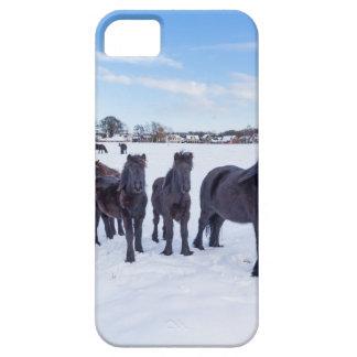Funda Para iPhone SE/5/5s Manada de los caballos negros del frisian en nieve