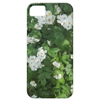 Funda Para iPhone SE/5/5s Manojos menudos de la flor blanca, con el centro