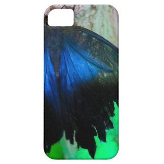 Funda Para iPhone SE/5/5s Mariposa azul común
