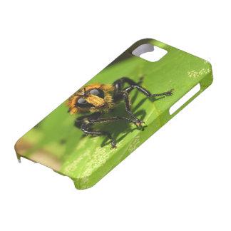 Funda Para iPhone SE/5/5s Mosca de ladrón