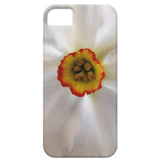 Funda Para iPhone SE/5/5s narciso del blanco de la perla