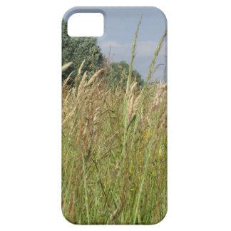 Funda Para iPhone SE/5/5s Paisaje del verano del campo salvaje en el campo