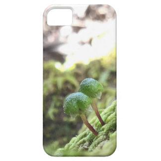 Funda Para iPhone SE/5/5s Paraguas del Bryophyta
