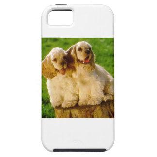 Funda Para iPhone SE/5/5s Perritos de cocker spaniel del americano en un
