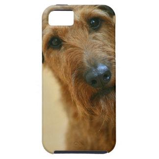 Funda Para iPhone SE/5/5s perro