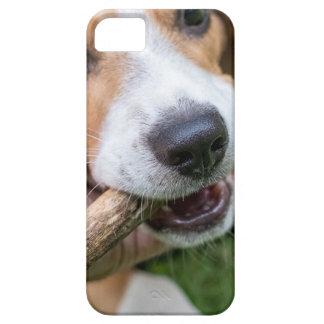Funda Para iPhone SE/5/5s Perro con el palillo