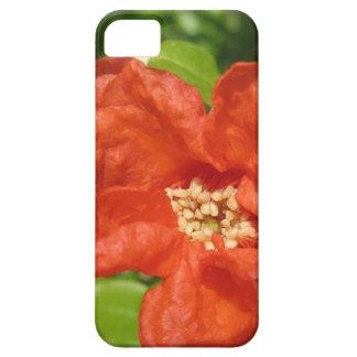 Funda Para iPhone SE/5/5s Primer de la flor roja de la granada