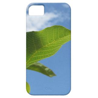 Funda Para iPhone SE/5/5s Primer de la hoja de la nuez encendido por la luz