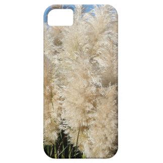 Funda Para iPhone SE/5/5s Primer de los penachos altos de la hierba de pampa