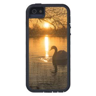 Funda Para iPhone SE/5/5s Puesta del sol con el cisne