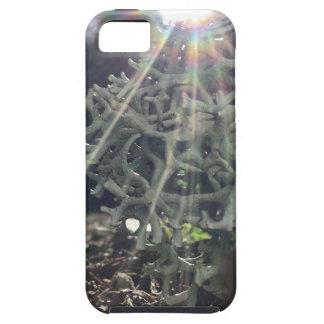 Funda Para iPhone SE/5/5s Rayos del liquen