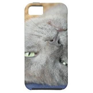 Funda Para iPhone SE/5/5s ¡Relájese! Caja de ronroneo gris del iPhone